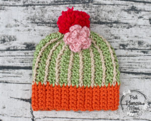 New Born Crocheted Cactus Beanie Pattern