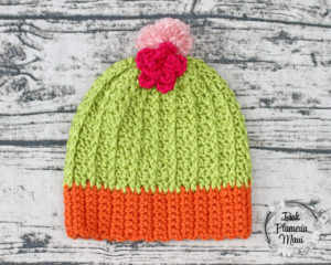 Toddler Crocheted Cactus Beanie Pattern