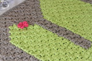 Flower Bulky Crocheted C2C Cactus Blanket