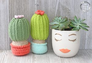 Sleepy Girl Succulents with Free Crocheted Cactus That Stands Up.