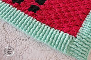 Crocheted C2C Cactus Banket ALOE! Border