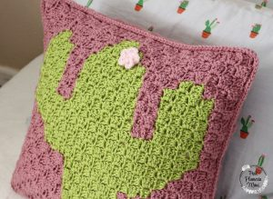 C2C Crocheted Cactus Pillow Flower