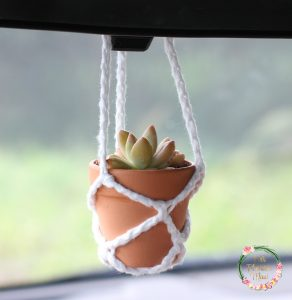 Crocheted Hanging Pot Holder in car with succulents.