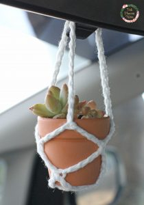 Crocheted Hanging Pot Holder with succulents up close.