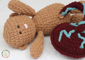 Crocheted Baby and Placenta up close.