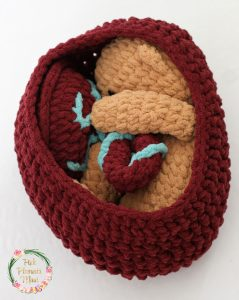 Crocheted Baby in Crocheted Womb