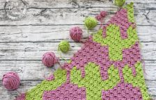 Crocheted C2C Cacti Blanket Part 1